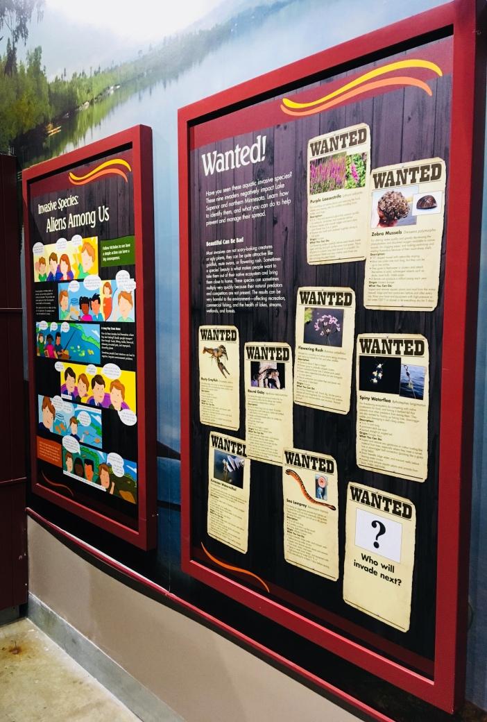 The Great Lakes Aquarium has a fantastic presentation on Lake Superior's invasive species