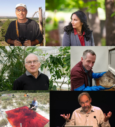 Ecology is a discipline that is constantly evolving. I spoke to (from top left to bottom right) Mark Davis, Madhur Anand, Paul Hebert, Andrew Hendry, Amy Austin and Bill Sutherland about the biggest changes they've seen in their careers