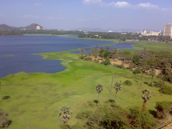 Powai_Lake_Summer