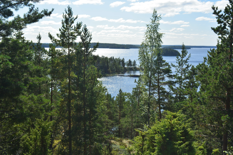 Linnansaari National Park, Finland (Image Credits Héctor Abarca Velencoso)