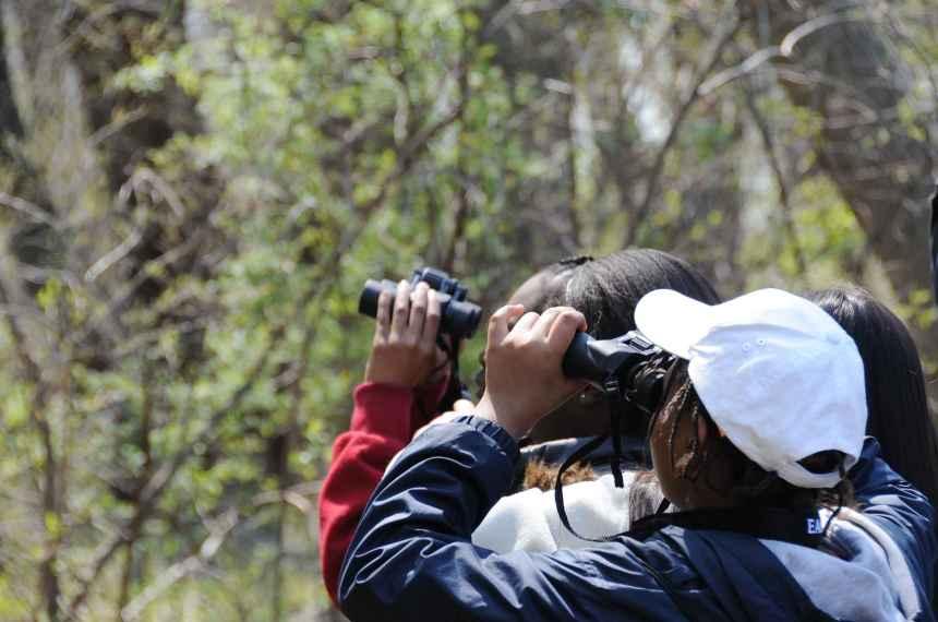 A_close_shot_of_children_birdwatching